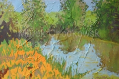 Landscape Of Pond